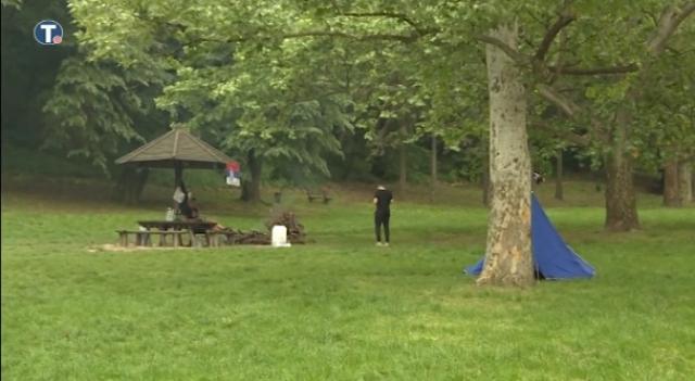 Policija otkrila ko je sekao drveće na Košutnjaku