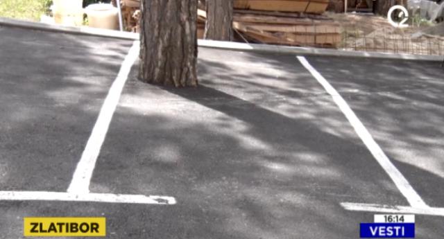 Ko betonira borove na Zlatiboru? VIDEO