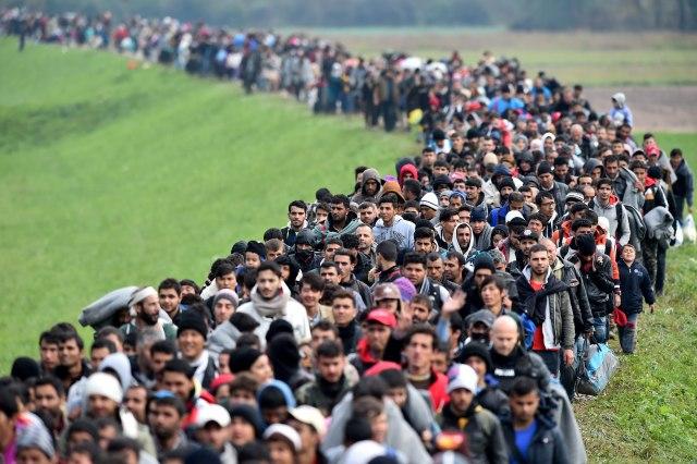 """""""Migrante na Balkan? Signal očajnih vremena"""""""