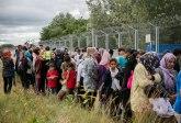 MK: Uhvaćeno 120 migranata koji su ilegalno prešli granicu