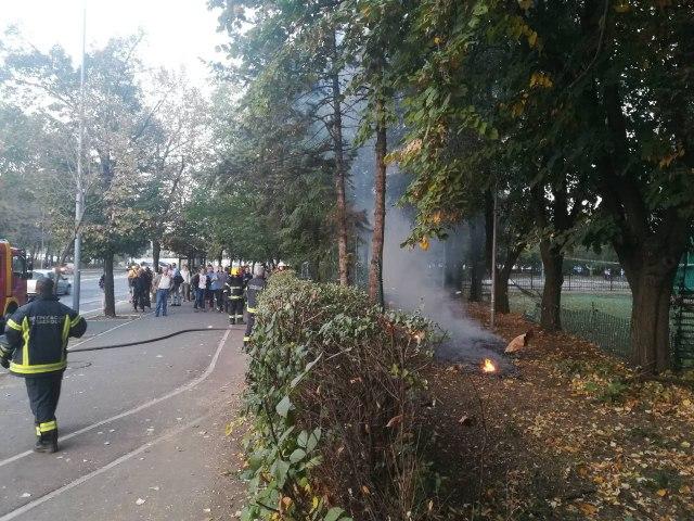 Požar kod škole na Novom Beogradu FOTO/VIDEO