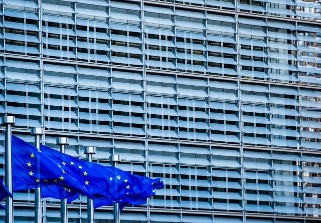 Žuti prsluci idu na izbore za EP
