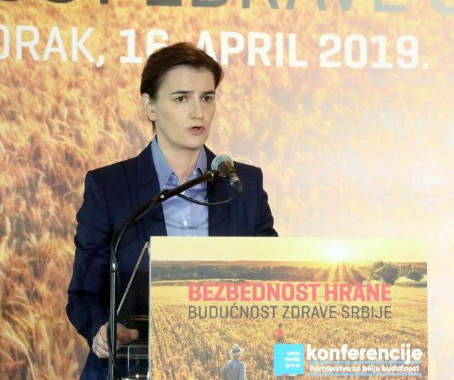 Brnabićeva: Srbija nije zemlja kojoj se serviraju rešenja