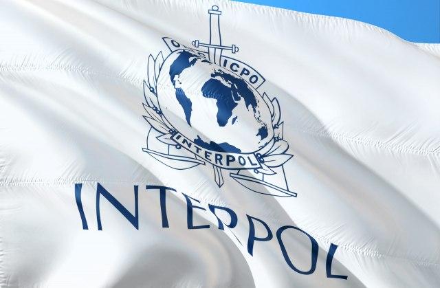 Popović Ivković: Sve ćemo učiniti da spečimo prijem Kosova u Interpol