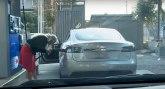 Skoro polovina Amerikanaca misli da je električnim automobilima potreban benzin