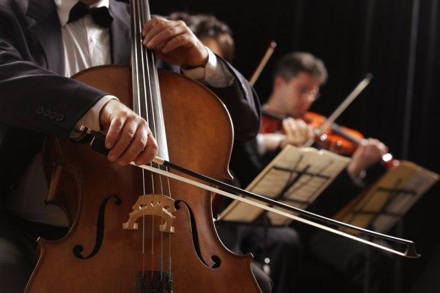 """Koncert klasične muzike """"Živeh za umetnost"""" biće održan 14.novembra"""