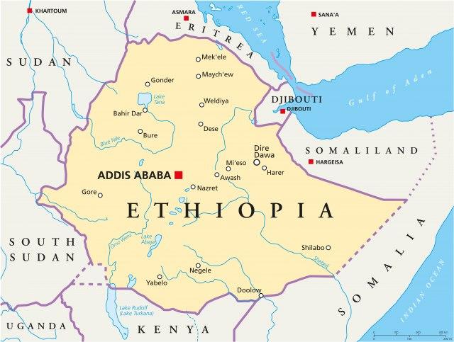 Stotine pristalica podržalo etiopskog aktivistu