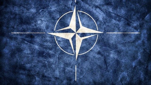 """""""NATO se raspada i to dočekujem širom raširenih ruku"""""""