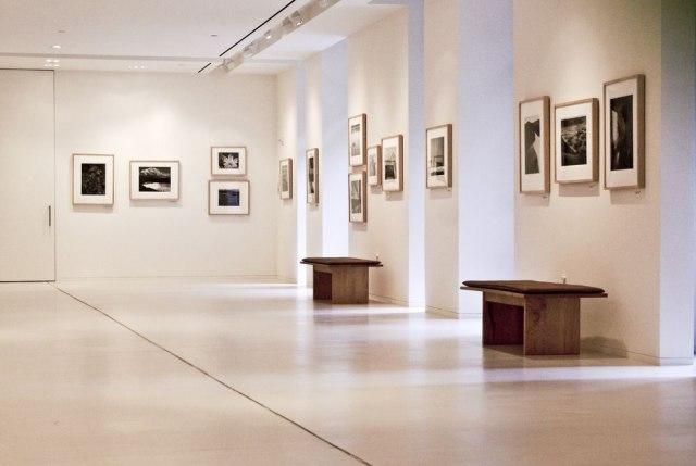U beogradskim galerijama dela umetnika različitih generacija i izraza