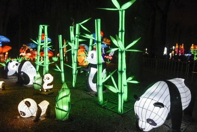 Kineski festival svetla će ponovo zasijati u Srbiji za Kinesku Novu godinu