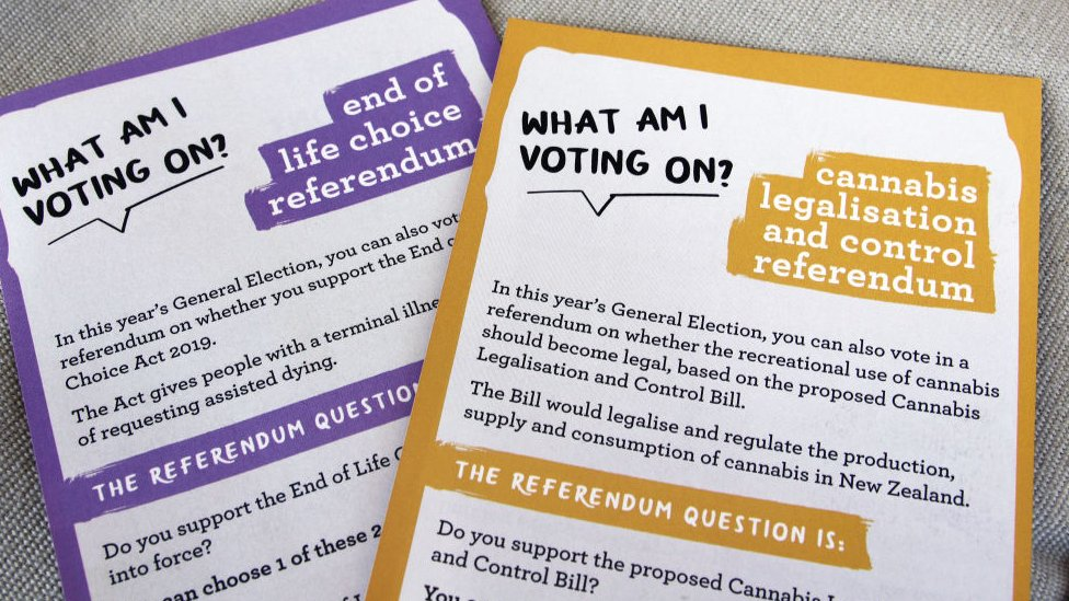 New Zealanders also voted in two referendums/Getty Images