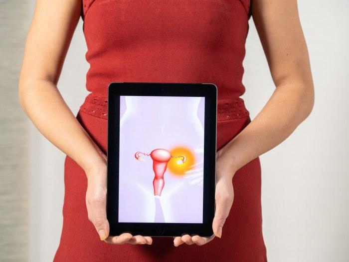 Virusi u ranoj trudnoci